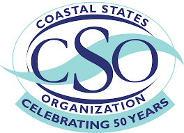 cso logo graphic